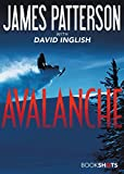 Avalanche (Kindle Single) (BookShots) фото