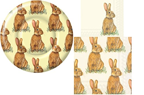 Bunny Themed Party Supply Pack! Bundle Includes Dessert Plates and Napkins with a Bunny Rabbit Theme for 8 Guests