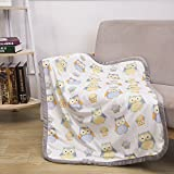 """Sunshine Breathable Baby Blanket Print Fleece Best Registry Gift For Newborn Soft- Perfect For Prince and Princess 30"""" x 40"""" (Owl)"""