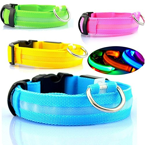 Led Safety Collar (Safety Dog LED Collar Flashing Light up, Glow and bright (Ships From USA) (Small, Blue))