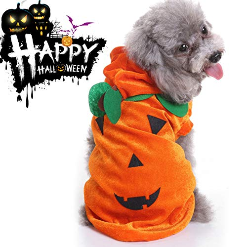 Halloween Costumes Pets Dogs Cats,Halloween Party Spider Skeleton