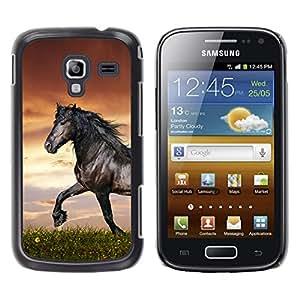 // PHONE CASE GIFT // Duro Estuche protector PC Cáscara Plástico Carcasa Funda Hard Protective Case for Samsung Galaxy Ace 2 / Hermoso Caballo Negro /