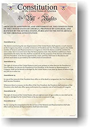 NEW American History Classroom POSTER The U.S Bill of Rights Constitution