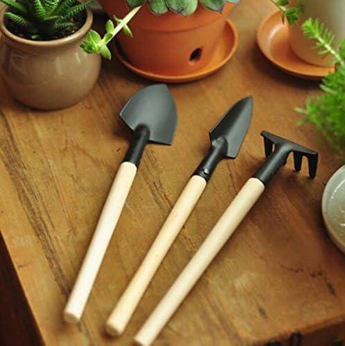SeedWorld - Macetas y macetas (3 piezas, para jardinería, bonsai ...