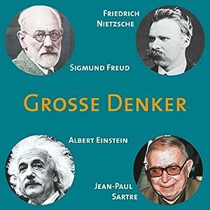 Grosse Denker: Nietzsche, Freud, Einstein, Sartre Audiobook