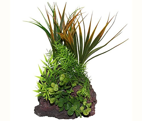 """Rock Garden Natural Green Plant with Red Lava Rock Base, 12"""""""