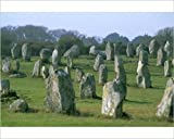 Photographic Print of Alignments of Megalithic standing stones, Carnac, Morbihan, Brittany, France