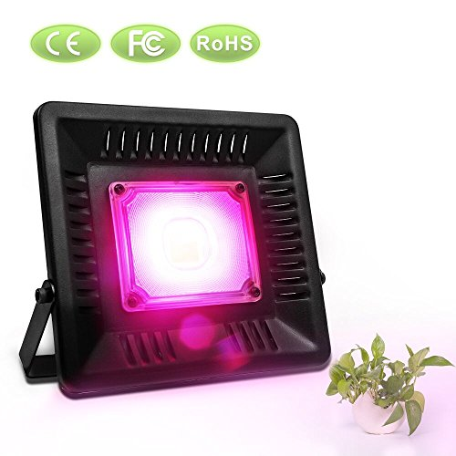 Led Grow Light No Fan in Florida - 5