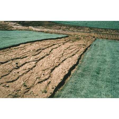 (DeWitt Erosion Control Blanket, 8 x 112.5 ft.)