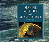 Marine Wildlife of Atlantic Europe, Young, Amanda and Kay, Paul G., 0907151817