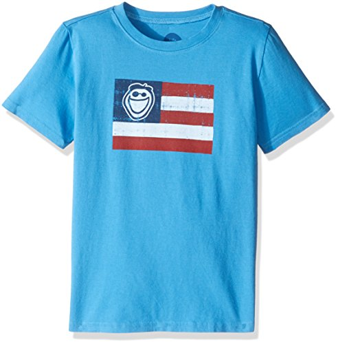 Life is Good Boys Jake Flag Tee, Marina Blue, Large (Is Life Good Flag T Shirt)