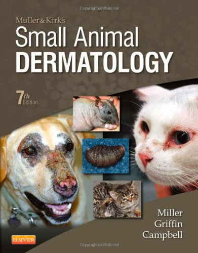 「small animal dermatology」の画像検索結果