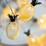 Highland Farms Select Pineapple String Lights - 10 LED Fairy String Lights Battery Operated for Christmas Home Wedding Party Bedroom Birthday Decoration (Warm White)-7ft