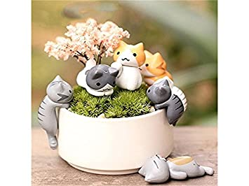 HSDDA Jardín de Hadas Fairy Garden Kit Miniatura Gatos ...