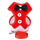 lriumpexplo Fashion Bowtie Gentleman Suit Tuxedo Harness Vest with Leash for Pet Dog Puppy Red M