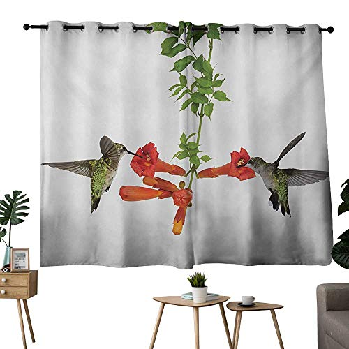 (NUOMANAN Curtains 63 inch Length Hummingbirds,Two Hummingbirds Sipping Nectar from a Trumpet Vine Blossoms Summertime,Red Black Green,Tie Up Window Drapes Living Room 42