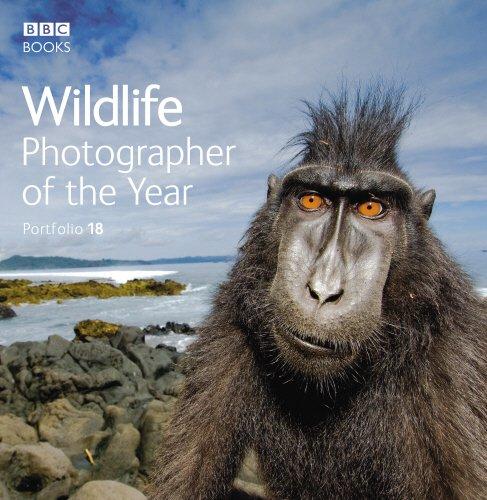 Wildlife Photographer of the Year: Portfolio 18