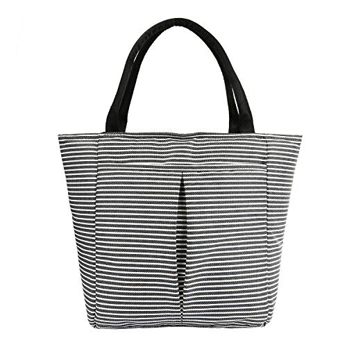 - Women Insulated Lunch Bag Waterproof Reusable Lunch Box with Zipper Cooler lunch tote bag, 2 Large Pocket, Leak-proof Lightweight for Work School Picnic