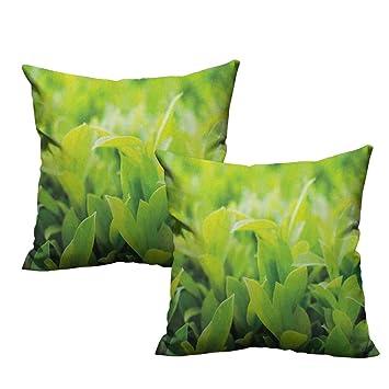 Amazon.com: RuppertTextile - Funda de almohada con diseño de ...