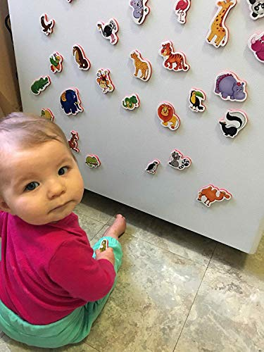 Refrigerator Magnets for Kids ZOO Animals 29 pcs- Fridge Magnets for Toddlers- Baby magnets- Toddler Magnets- Zoo animals for toddlers- Kid magnets- Kids magnets- Toddler toys- Animals toys