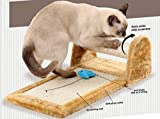 Rolling Cat Scratcher Toy | Rolls While Kitty Scratches