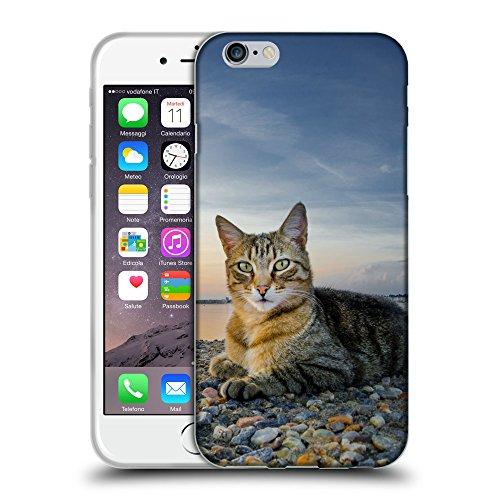 """Just Phone Cases Coque de Protection TPU Silicone Case pour // V00004208 Chat allongé sur la plage de galets // Apple iPhone 6 6S 6G PLUS 5.5"""""""