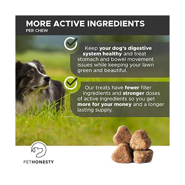 PetHonesty GrassGreen Grass Burn Spot Chews for Dogs - Dog Pee Lawn Spot Saver Treatment Caused by Dog Urine - Cranberry, Apple Cider Vinegar, DL-Methionine Grass Treatment Rocks - 90 Chew Treats 6