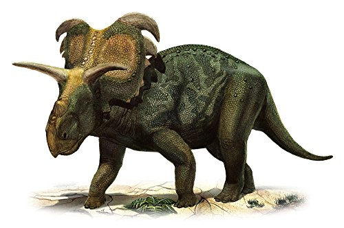 - Posterazzi Medusaceratops lokii a prehistoric era dinosaur from the Late Cretaceous period Poster Print (17 x 11)