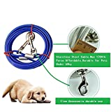 Stainless Steel Pet Dog Tie Out Cable - Double Head Dog Leash Camping Outdoor Tie-out Cable for Medium Large Pet Dogs (10m/33Ft, Blue)