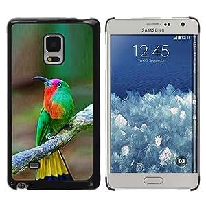 Be Good Phone Accessory // Dura Cáscara cubierta Protectora Caso Carcasa Funda de Protección para Samsung Galaxy Mega 5.8 9150 9152 // tropical bird songbird brown yellow