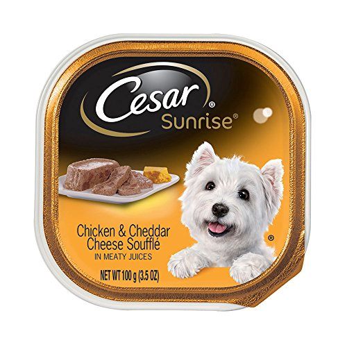 CESAR SUNRISE Chicken and Cheddar Cheese Souffle Breakfast Dog Food Trays 3.5 oz. (Pack of 24)