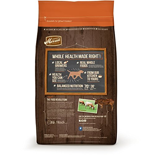 Merrick-Grain-Free-Real-Texas-Beef-Sweet-Potato-Recipe-Dry-Dog-Food-25-Pound