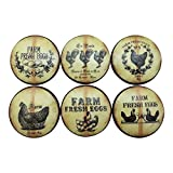 Set of 6 Farm Fresh Eggs Oversized Cabinet Knobs (Tan Stripe)