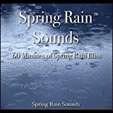 Spring Rain Sounds - 60 Minutes of Spring Rain Bliss