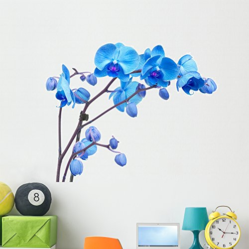 Wallmonkeys Blue Orchid Flowers Wall Decal Peel and Stick Floral Graphic (48 in W x 36 in H) WM367967