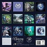 Unicorns by Anne Stokes Wall Calendar 2020