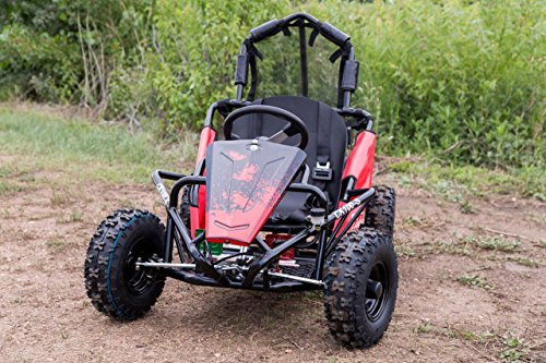 Coleman Powersports 98cc/3.0HP CK100-S Go Kart by Coleman Powersports (Image #2)
