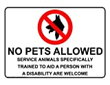 ComplianceSigns Vinyl Service Animals Label, 10 x 7 in. with English, White