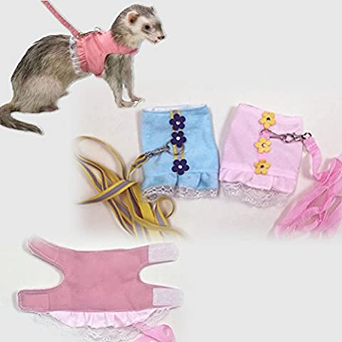 Ferret Marshall Harness Leash Set Little Pet Safety Walking Vest with Lead Grooming Accessories for Small Animals Guinea Pigs Rabbits and Rats (Ferret Harnesses And Leashes)
