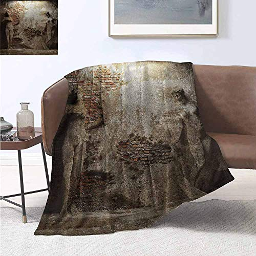 - HCCJLCKS Living Room/Bedroom Warm Blanket Sculptures Antique Woman Figure Print Digital Printing Blanket W70 xL93 Traveling,Hiking,Camping,Full Queen,TV,Cabin