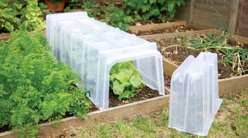 how to get rid of moss in a vegetable garden
