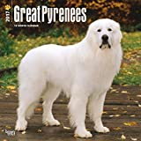 Great Pyrenees Dogs Wall Calendar 2017 {jg} Best Holiday Gift Ideas - Great for mom, dad, sister, brother, grandparents, , grandchildren, grandma, gay, lgbtq.