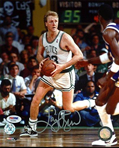 Celtics Larry Bird Authentic Signed 8X10 Photo w/ Bird Hologram & PSA/DNA 1