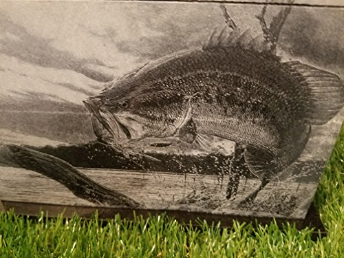 175 CU.In Human Granite Urn Engraved Deer Hunting Bass Fishing by The Memories Collection (Image #4)