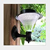 OEM Outdoor Solar 16-LED 6V 1W Wall Garden Path Courtyard Light - White / Warm White