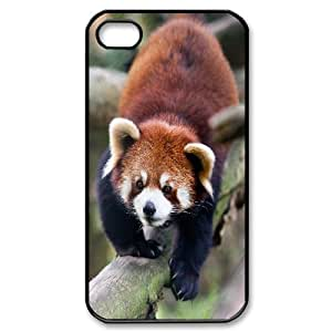 [Beautiful Panda] Red Panda Animal For Ipod Touch 5 Case Cover {Black}