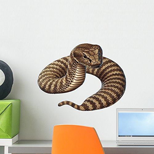 Wallmonkeys Deathadder Snake Wall Decal by Peel and Stick Graphic (18 in W x 14 in H) - Snake Decals Wall