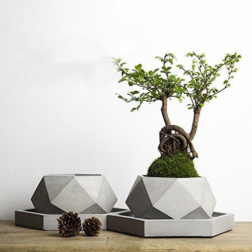Pinkie Tm V001 Creative polygon vase concrete planter mold handmade craft home decoration geometry cement flowerpot molds