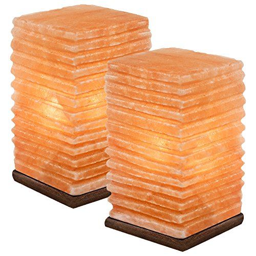 2 Natural Himalayan Salt Lamp w/ Bulb, Dimmer Cord