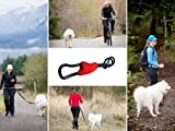 Bicycle Dog Leash - Buddy - Hands free dog leash connector - biking, jogging, hiking, walking